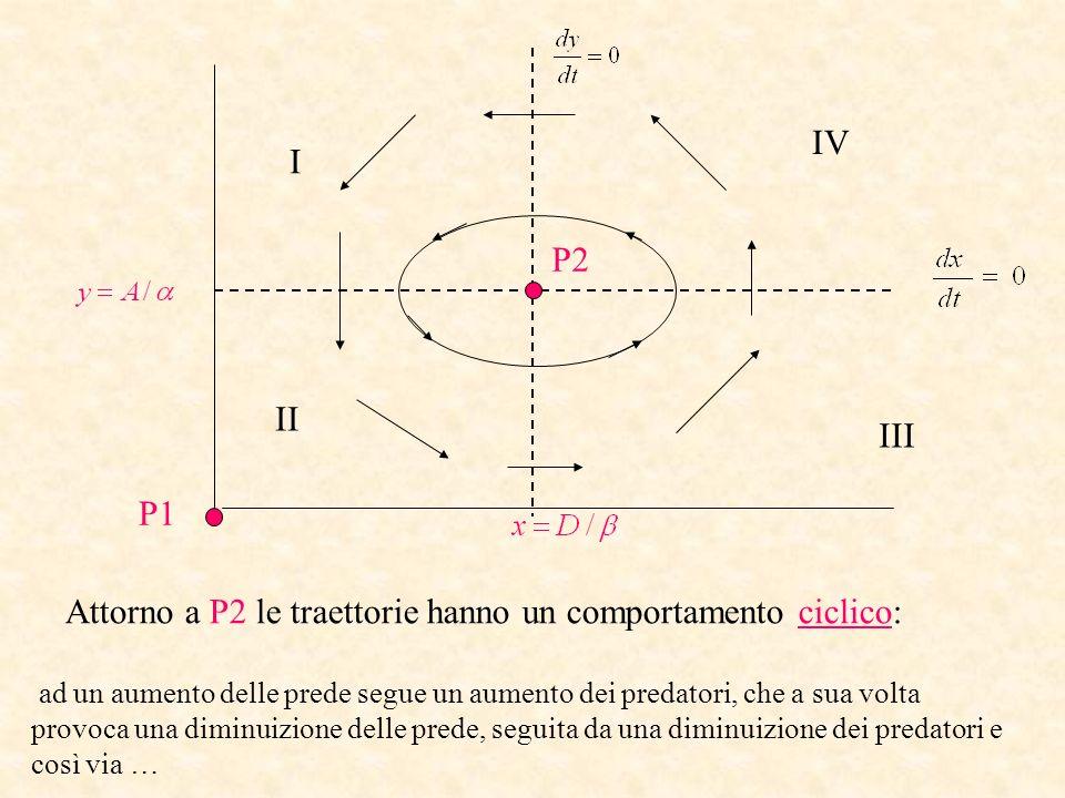 P1 P2 I II III IV Attorno a P2 le traettorie hanno un comportamento ciclico: ad un aumento delle prede segue un aumento dei predatori, che a sua volta
