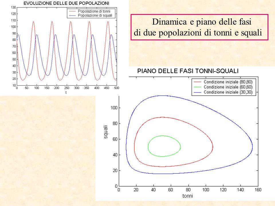 Dinamica e piano delle fasi di due popolazioni di tonni e squali