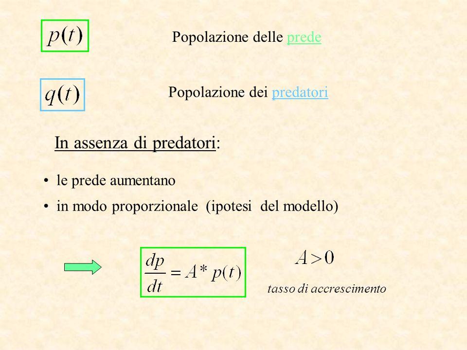 Popolazione dei predatori Popolazione delle prede In assenza di predatori: le prede aumentano in modo proporzionale (ipotesi del modello) tasso di acc