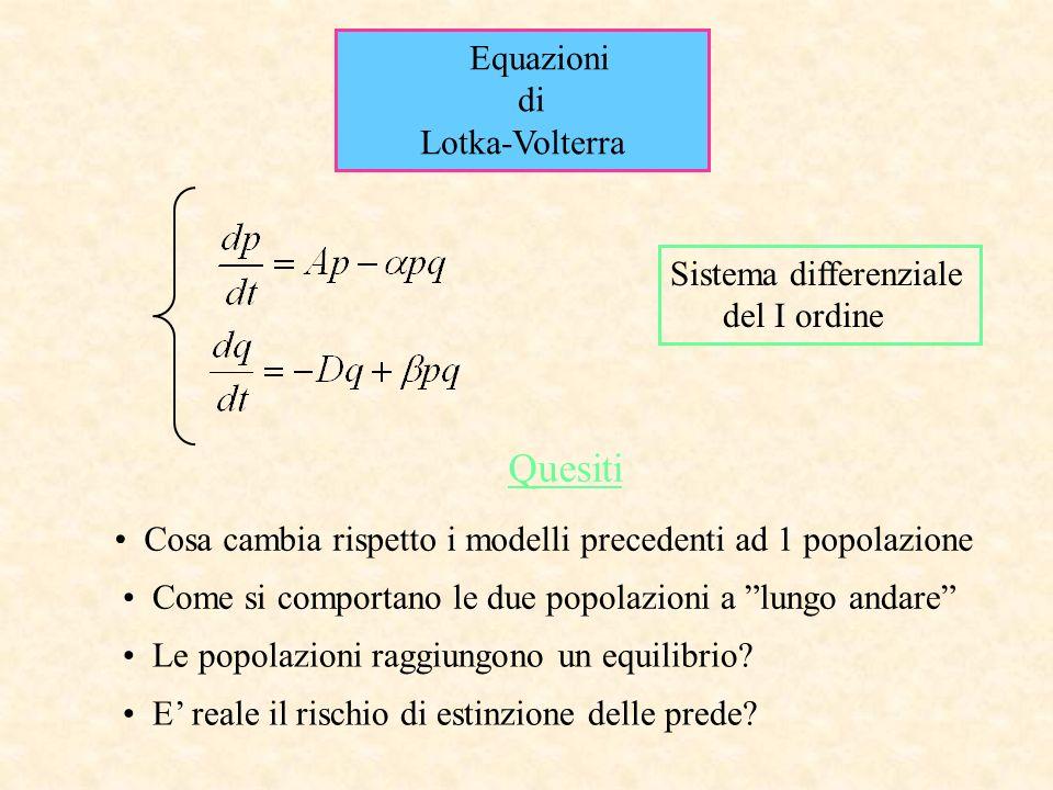 Equazioni di Lotka-Volterra Quesiti Cosa cambia rispetto i modelli precedenti ad 1 popolazione Come si comportano le due popolazioni a lungo andare Le