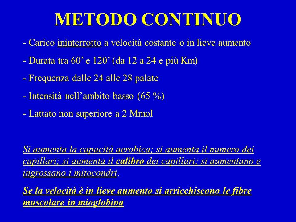 METODO CONTINUO - Carico ininterrotto a velocità costante o in lieve aumento - Durata tra 60 e 120 (da 12 a 24 e più Km) - Frequenza dalle 24 alle 28 palate - Intensità nellambito basso (65 %) - Lattato non superiore a 2 Mmol Si aumenta la capacità aerobica; si aumenta il numero dei capillari; si aumenta il calibro dei capillari; si aumentano e ingrossano i mitocondri.