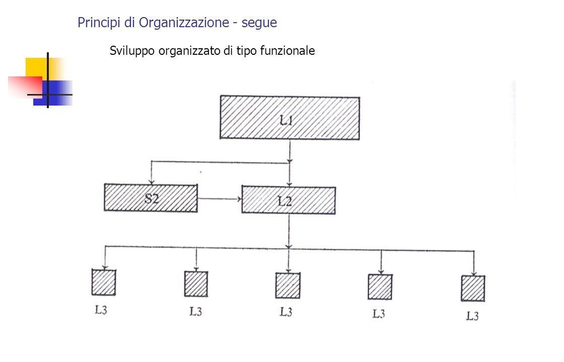 Principi di Organizzazione - segue Sviluppo organizzato di tipo funzionale