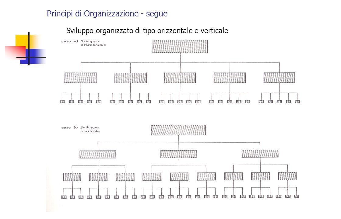 Principi di Organizzazione - segue Sviluppo organizzato di tipo orizzontale e verticale