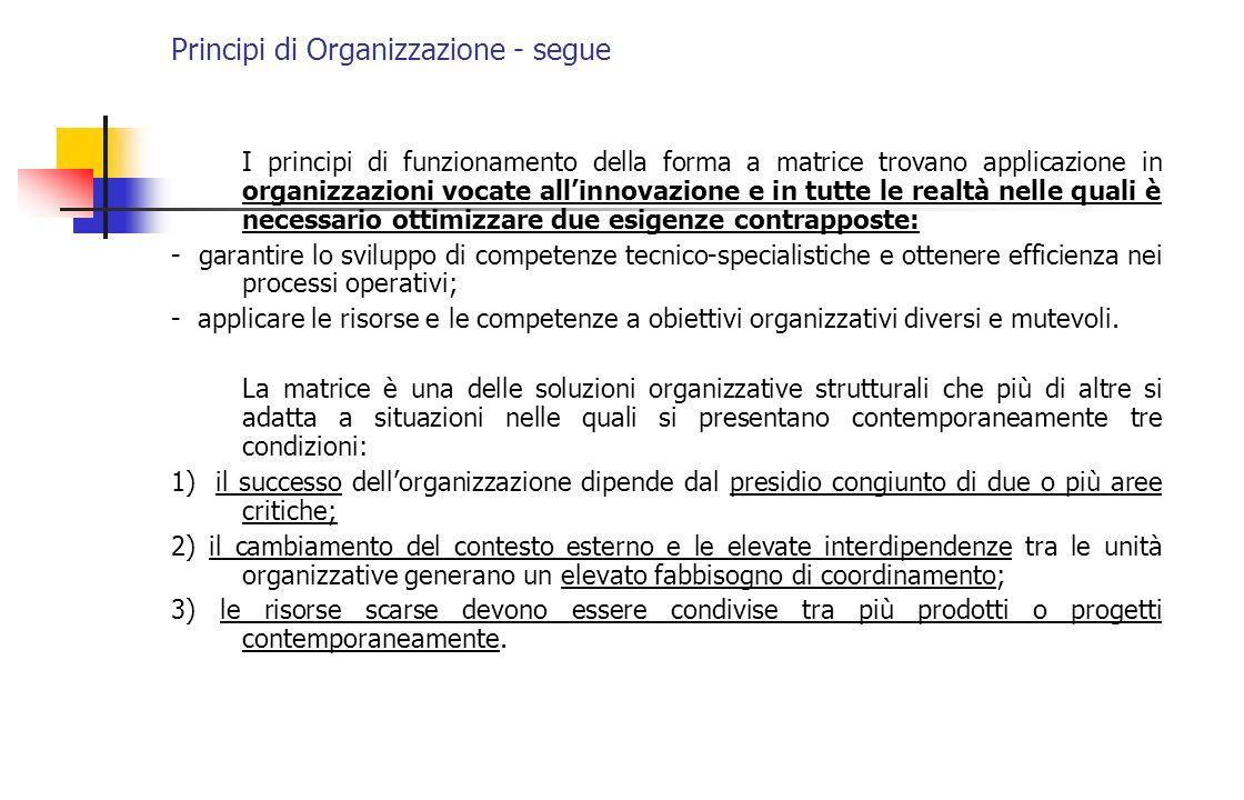 Principi di Organizzazione - segue I principi di funzionamento della forma a matrice trovano applicazione in organizzazioni vocate allinnovazione e in