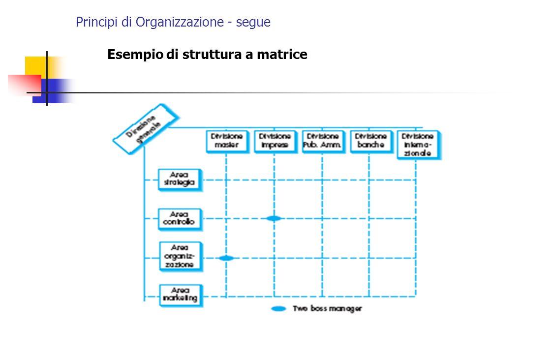 Principi di Organizzazione - segue Esempio di struttura a matrice