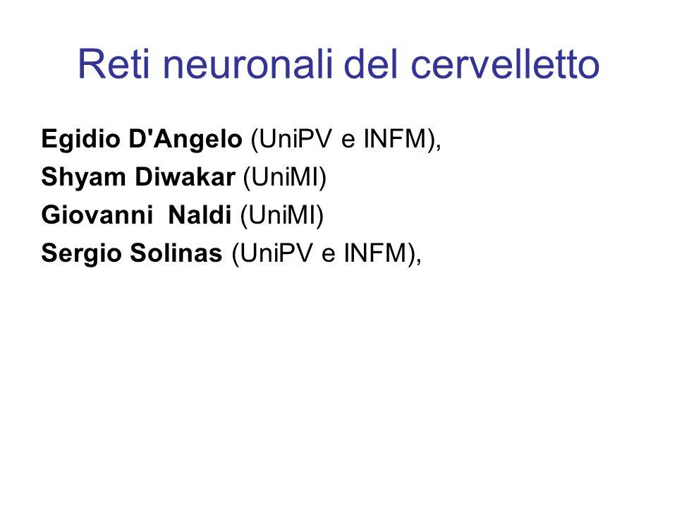 Reti neuronali del cervelletto Egidio D Angelo (UniPV e INFM), Shyam Diwakar (UniMI) Giovanni Naldi (UniMI) Sergio Solinas (UniPV e INFM),