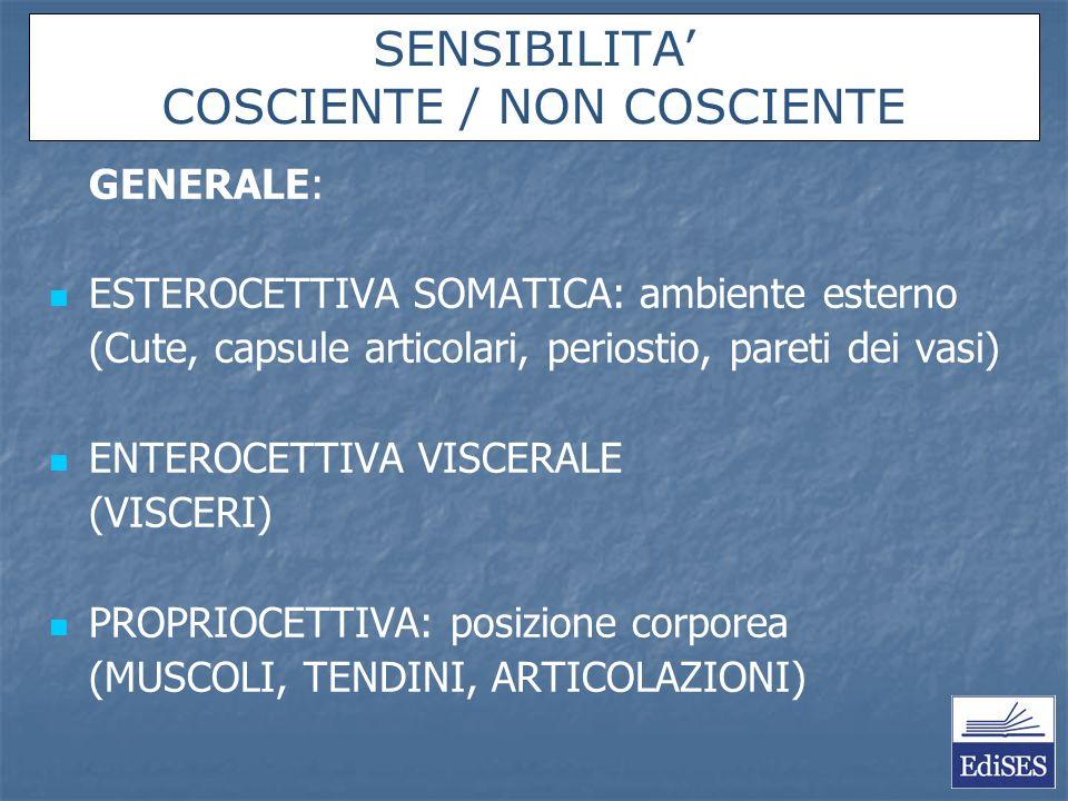 Martini, Timmons – Anatomia Umana, IV Ed. SENSIBILITA COSCIENTE / NON COSCIENTE GENERALE: ESTEROCETTIVA SOMATICA: ambiente esterno (Cute, capsule arti