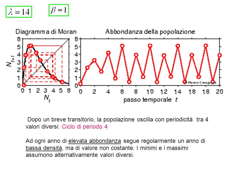 Dopo un breve transitorio, la popolazione oscilla con periodicità tra 4 valori diversi. Ciclo di periodo 4 Ad ogni anno di elevata abbondanza segue re