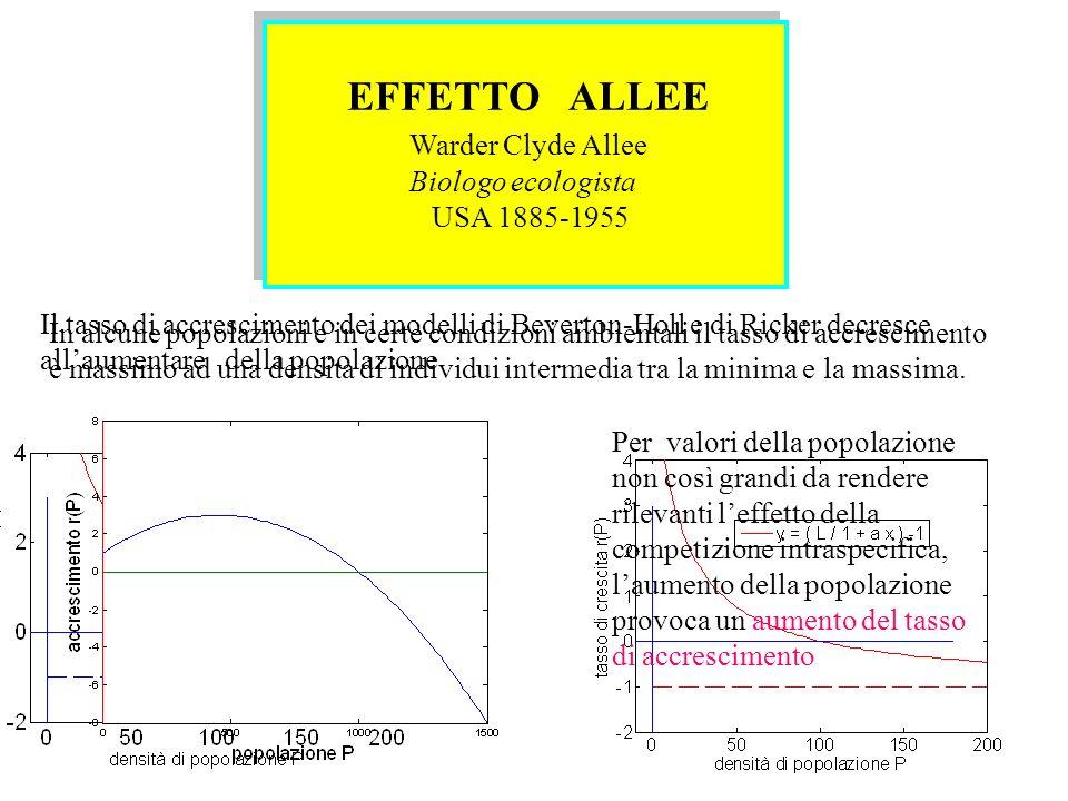 EFFETTO ALLEE Warder Clyde Allee Biologo ecologista USA 1885-1955 EFFETTO ALLEE Warder Clyde Allee Biologo ecologista USA 1885-1955 In alcune popolazi