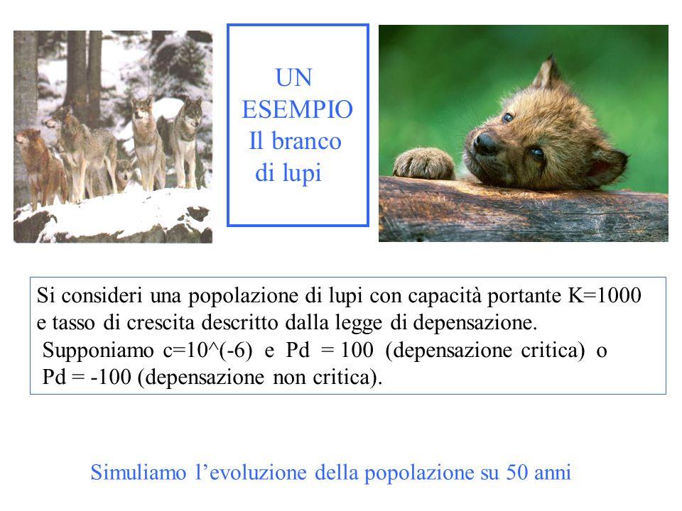 UN ESEMPIO Il branco di lupi Si consideri una popolazione di lupi con capacità portante K=1000 e tasso di crescita descritto dalla legge di depensazio