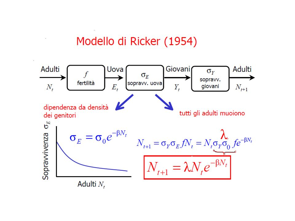 COMPORTAMENTO DEL MODELLO DI RICKER ( DINAMICHE CAOTICHE )