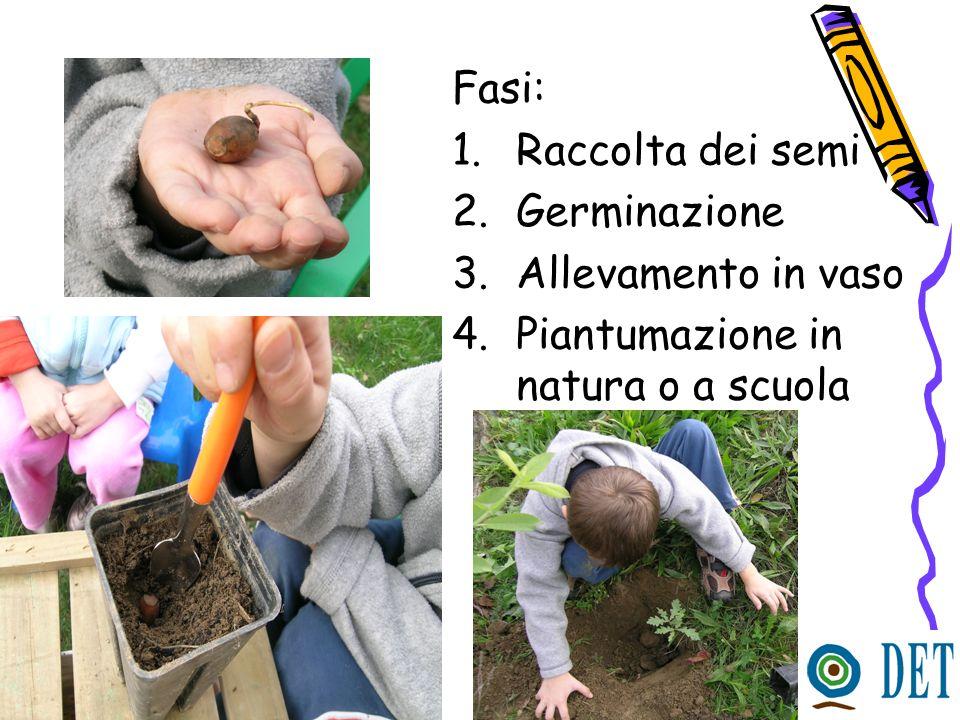 Prodotti multimediali già disponibili Sito internet dedicato ai bambini riguardante la biodiversità vegetale e la sua conservazione Film di RAI 3 sulla banca di Pavia Cartone animato Materiali informativi vari