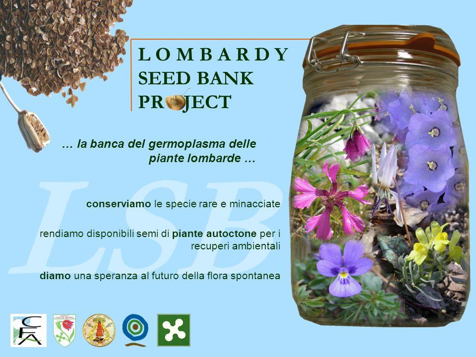 LSB rendiamo disponibili semi di piante autoctone per i recuperi ambientali conserviamo le specie rare e minacciate diamo una speranza al futuro della