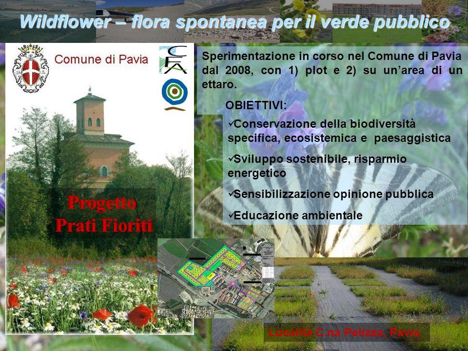 Assessorato urbanistica e politiche agricole e forestali Località C.na Pelizza, Pavia Conservazione della biodiversità specifica, ecosistemica e paesa