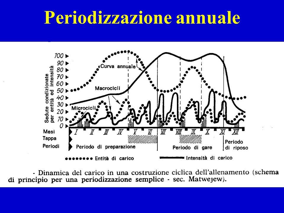 Periodizzazione annuale
