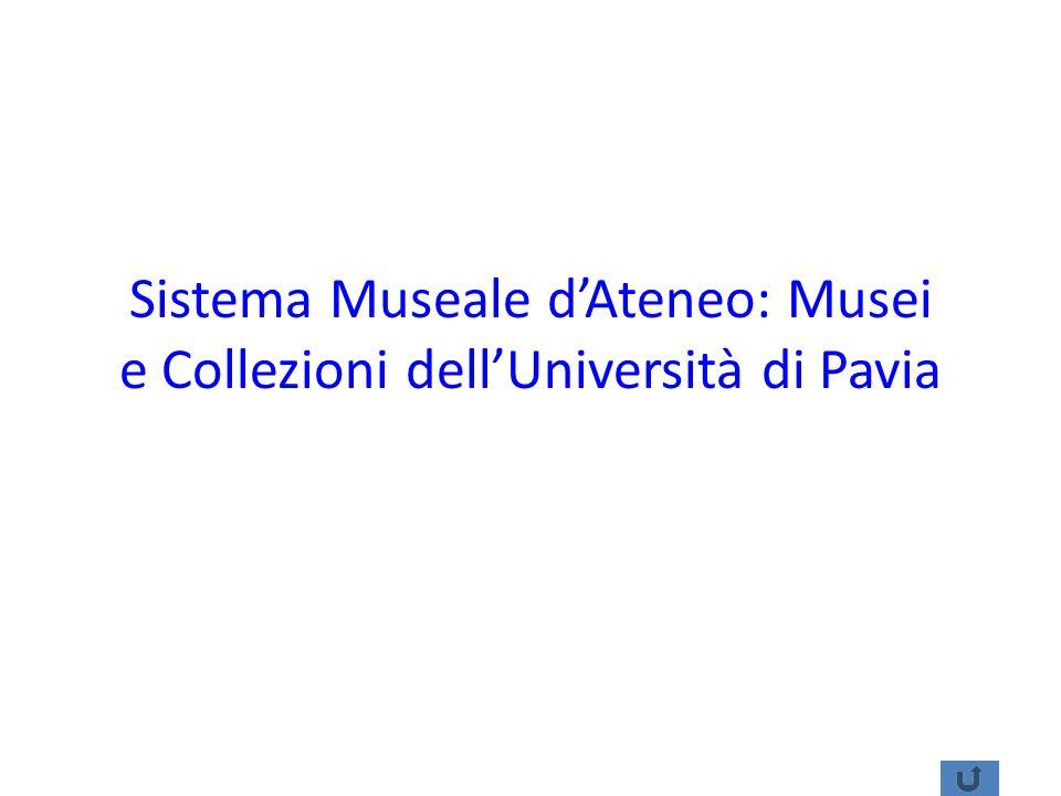 Sistema Museale dAteneo: Musei e Collezioni dellUniversità di Pavia