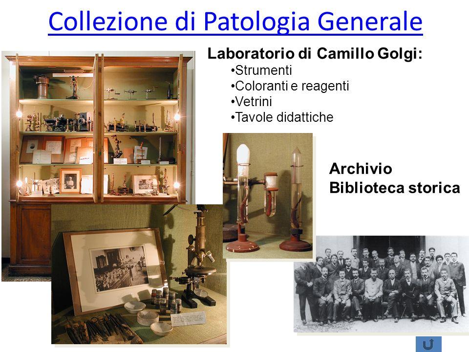 Collezione di Patologia Generale Laboratorio di Camillo Golgi: Strumenti Coloranti e reagenti Vetrini Tavole didattiche Archivio Biblioteca storica