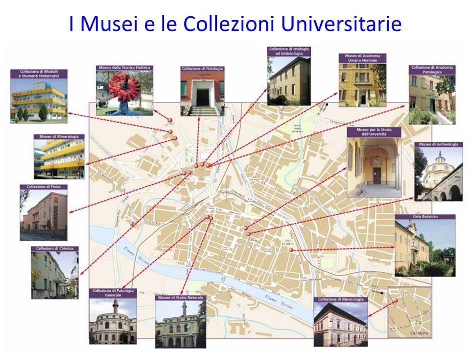 Volume e sito web ppp.unipv.it/musei