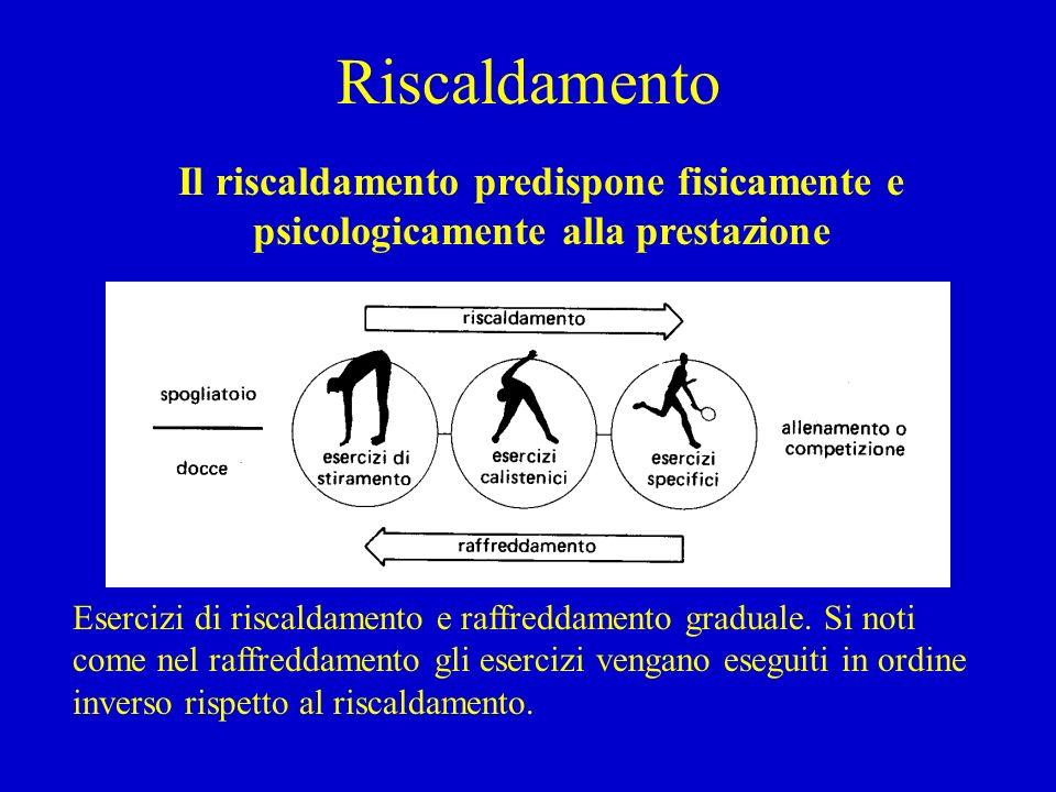 Stiramento Gli esercizi devono coinvolgere i maggiori gruppi muscolari e le articolazioni.
