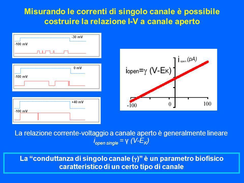 -30 mV 0 mV +40 mV -100 mV La conduttanza di singolo canale ( ) è un parametro biofisico caratteristico di un certo tipo di canale La relazione corren