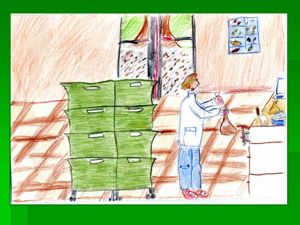 Alla Banca del Germoplasma si lavora per raccogliere, studiare e conservare un gran numero di semi.