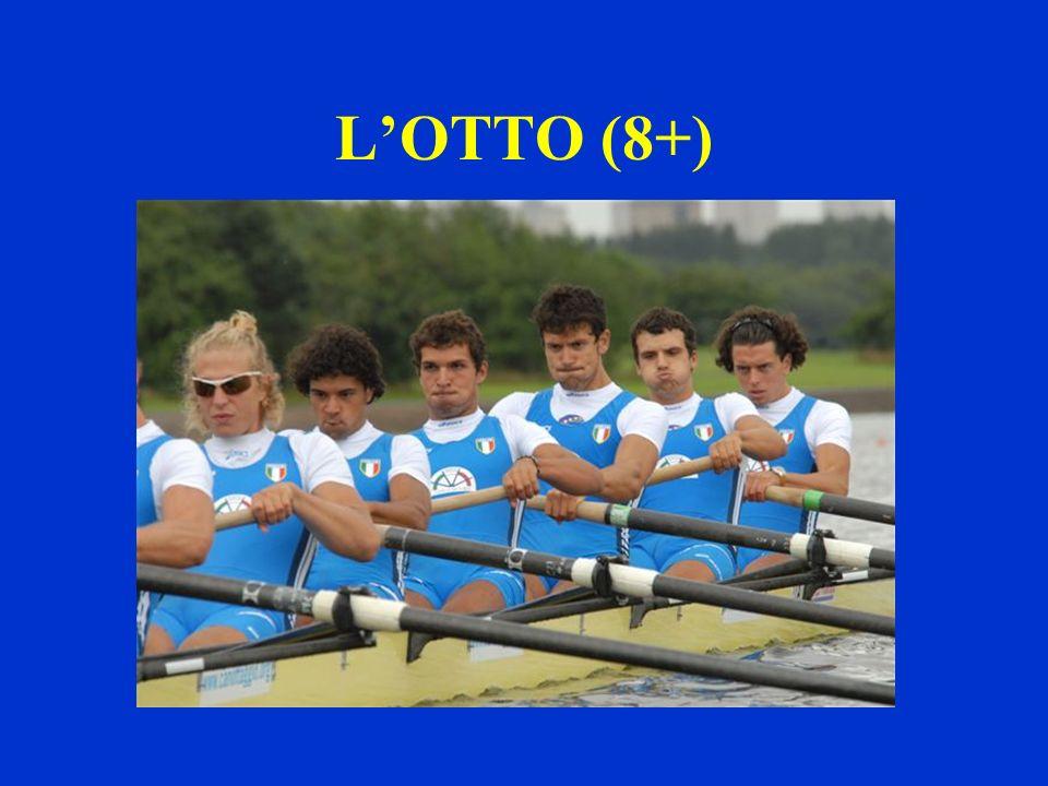 LOTTO (8+)