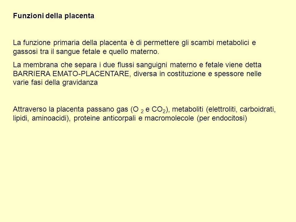 Funzioni della placenta La funzione primaria della placenta è di permettere gli scambi metabolici e gassosi tra il sangue fetale e quello materno. La