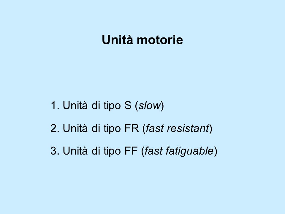 Unità motorie 1. Unità di tipo S (slow) 2. Unità di tipo FR (fast resistant) 3. Unità di tipo FF (fast fatiguable)