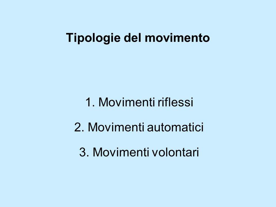 Tipologie del movimento 1. Movimenti riflessi 2. Movimenti automatici 3. Movimenti volontari
