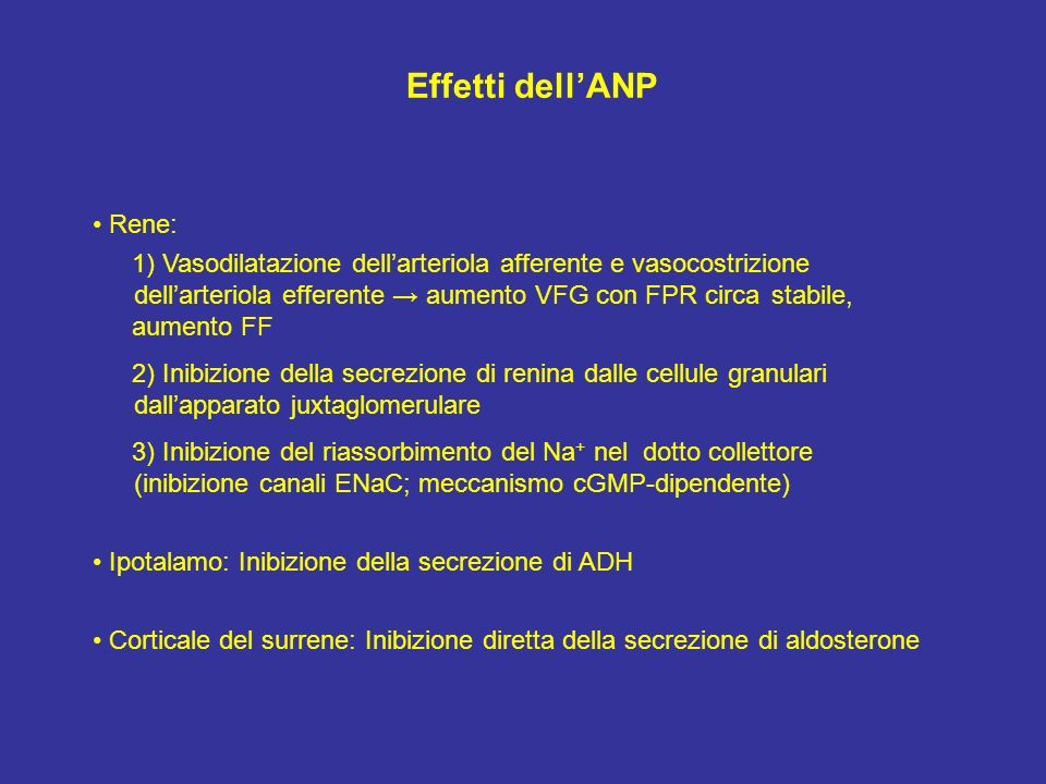 Effetti dellANP Rene: 1) Vasodilatazione dellarteriola afferente e vasocostrizione dellarteriola efferente aumento VFG con FPR circa stabile, aumento