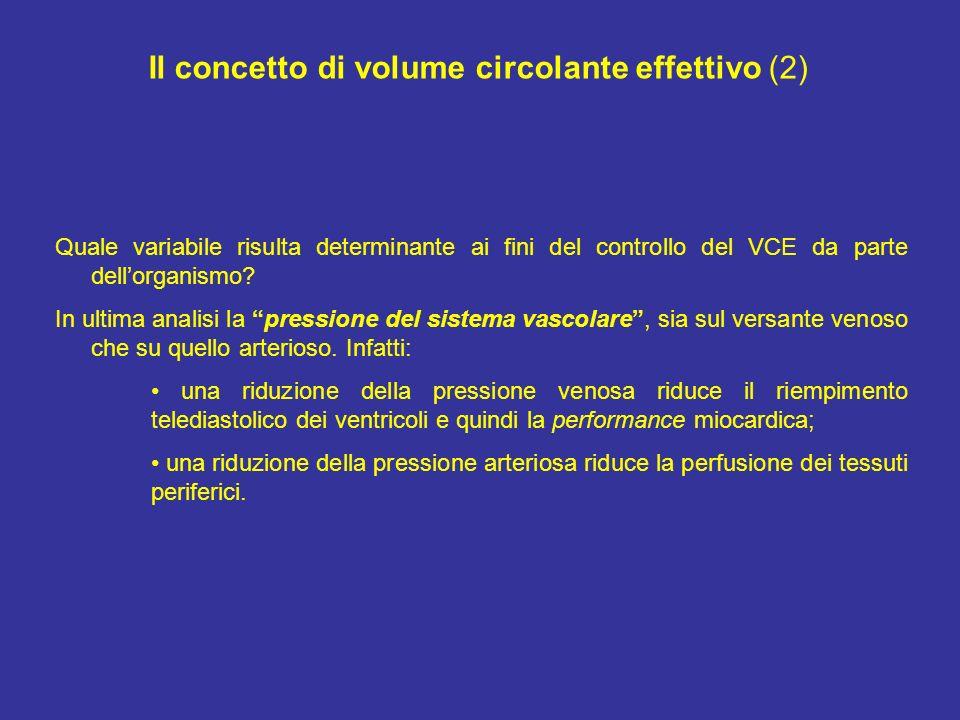 Il concetto di volume circolante effettivo (2) Quale variabile risulta determinante ai fini del controllo del VCE da parte dellorganismo? In ultima an
