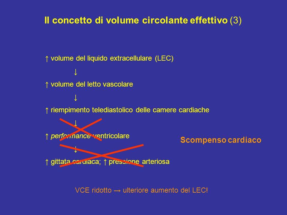 Il concetto di volume circolante effettivo (3) volume del liquido extracellulare (LEC) volume del letto vascolare riempimento telediastolico delle cam