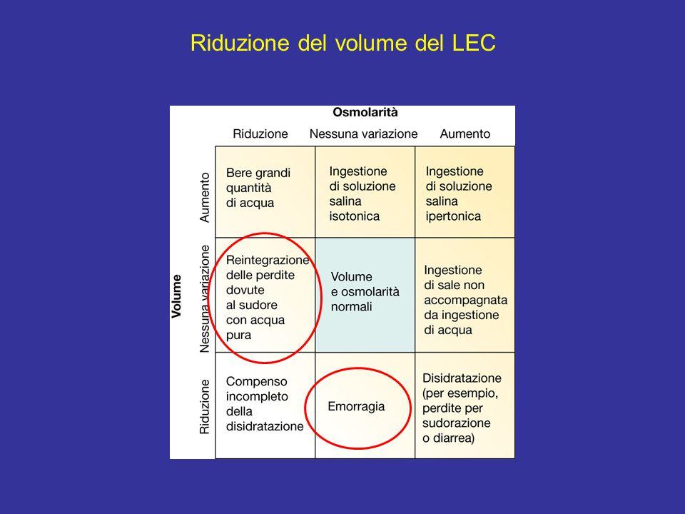 Riduzione del volume del LEC