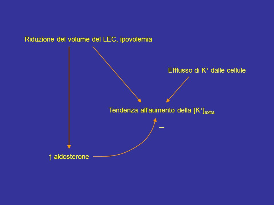 Riduzione del volume del LEC, ipovolemia Efflusso di K + dalle cellule Tendenza allaumento della [K + ] extra aldosterone –