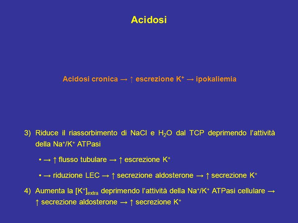 Acidosi 3)Riduce il riassorbimento di NaCl e H 2 O dal TCP deprimendo lattività della Na + /K + ATPasi flusso tubulare escrezione K + riduzione LEC se