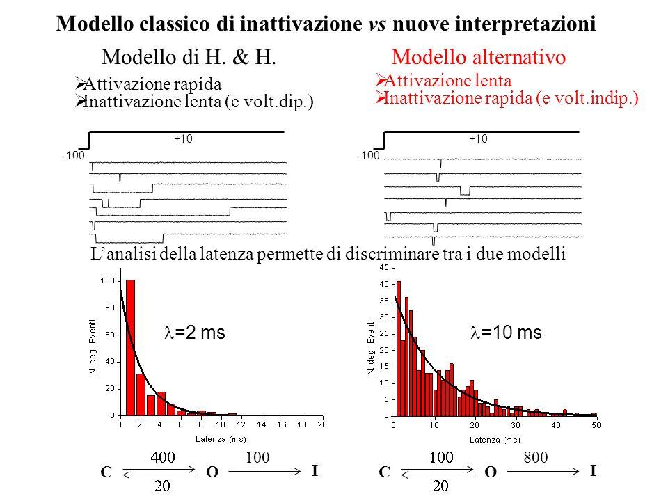 =2 ms =10 ms Modello classico di inattivazione vs nuove interpretazioni Lanalisi della latenza permette di discriminare tra i due modelli C O 100 I C