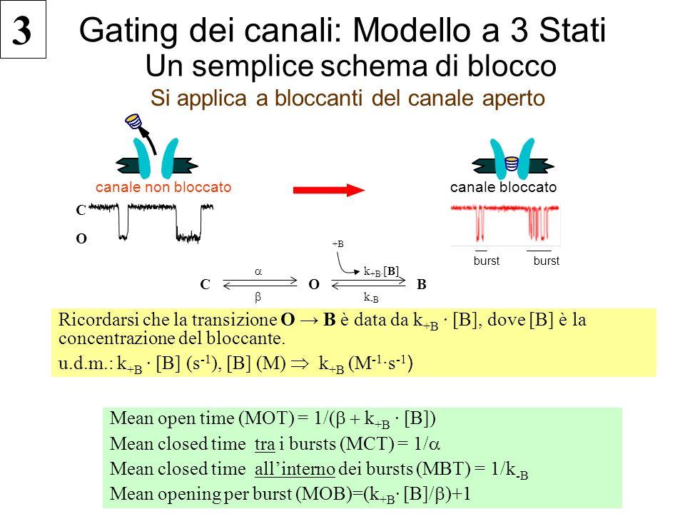 Gating dei canali: Modello a 3 Stati Si applica a bloccanti del canale aperto Un semplice schema di blocco C O k +B · [B] k -B B canale non bloccato C