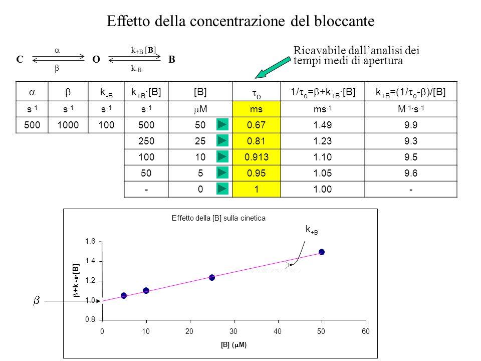 Effetto della [B] sulla cinetica 0.8 1.0 1.2 1.4 1.6 0102030405060 [B] ( M) +k * [B] C O k +B · [B] k -B B Effetto della concentrazione del bloccante