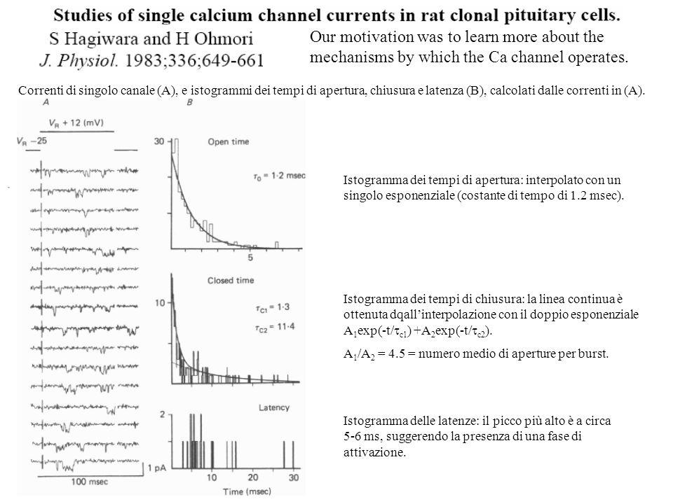 Correnti di singolo canale (A), e istogrammi dei tempi di apertura, chiusura e latenza (B), calcolati dalle correnti in (A). Istogramma dei tempi di a