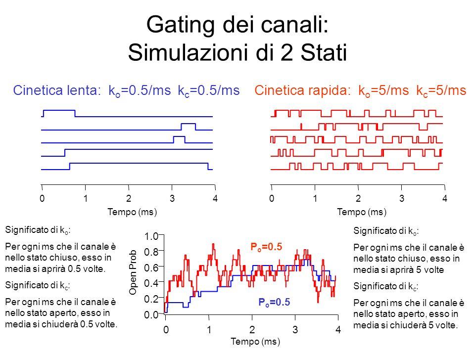 Gating dei canali: Altre simulazioni a due stati 43210 Tempo (ms) 1.0 0.8 0.6 0.4 0.2 0.0 Open Prob 43210 Tempo (ms) Alta P o : k o =5/ms k c =0.5/ms 43210 Tempo (ms) Bassa P o : k o =0.5/ms k c =5/ms P o =0.9 P o =0.1