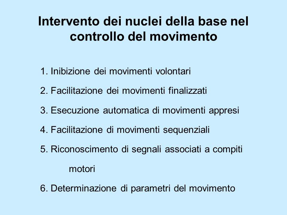 Intervento dei nuclei della base nel controllo del movimento 1. Inibizione dei movimenti volontari 2. Facilitazione dei movimenti finalizzati 3. Esecu