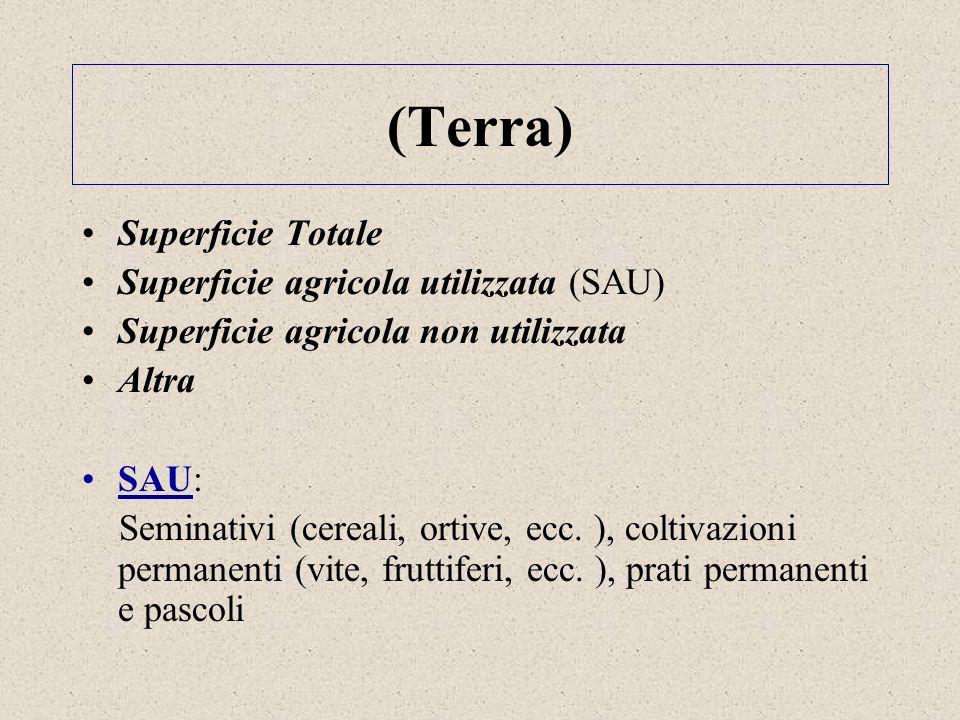 (Terra) Superficie Totale Superficie agricola utilizzata (SAU) Superficie agricola non utilizzata Altra SAU: Seminativi (cereali, ortive, ecc. ), colt