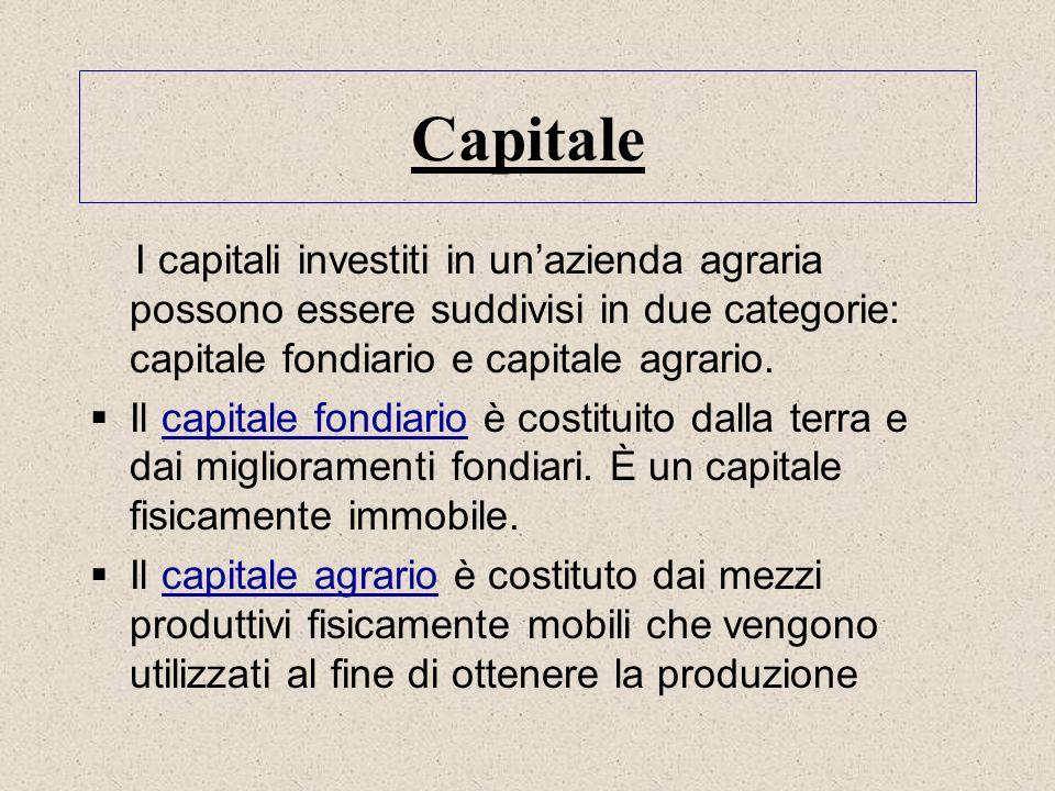Capitale I capitali investiti in unazienda agraria possono essere suddivisi in due categorie: capitale fondiario e capitale agrario. Il capitale fondi