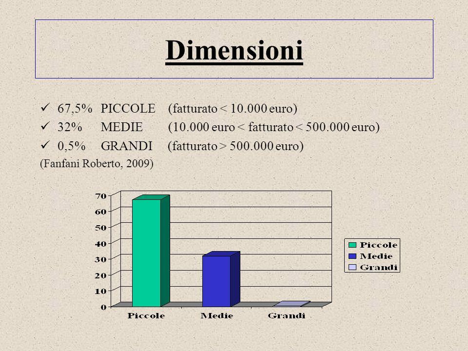 Dimensioni 67,5% PICCOLE (fatturato < 10.000 euro) 32% MEDIE (10.000 euro < fatturato < 500.000 euro) 0,5% GRANDI (fatturato > 500.000 euro) (Fanfani