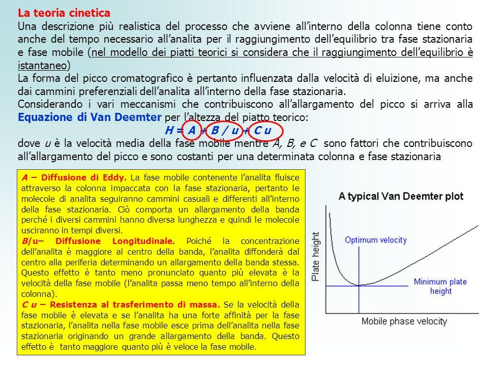 La teoria cinetica Una descrizione più realistica del processo che avviene allinterno della colonna tiene conto anche del tempo necessario allanalita