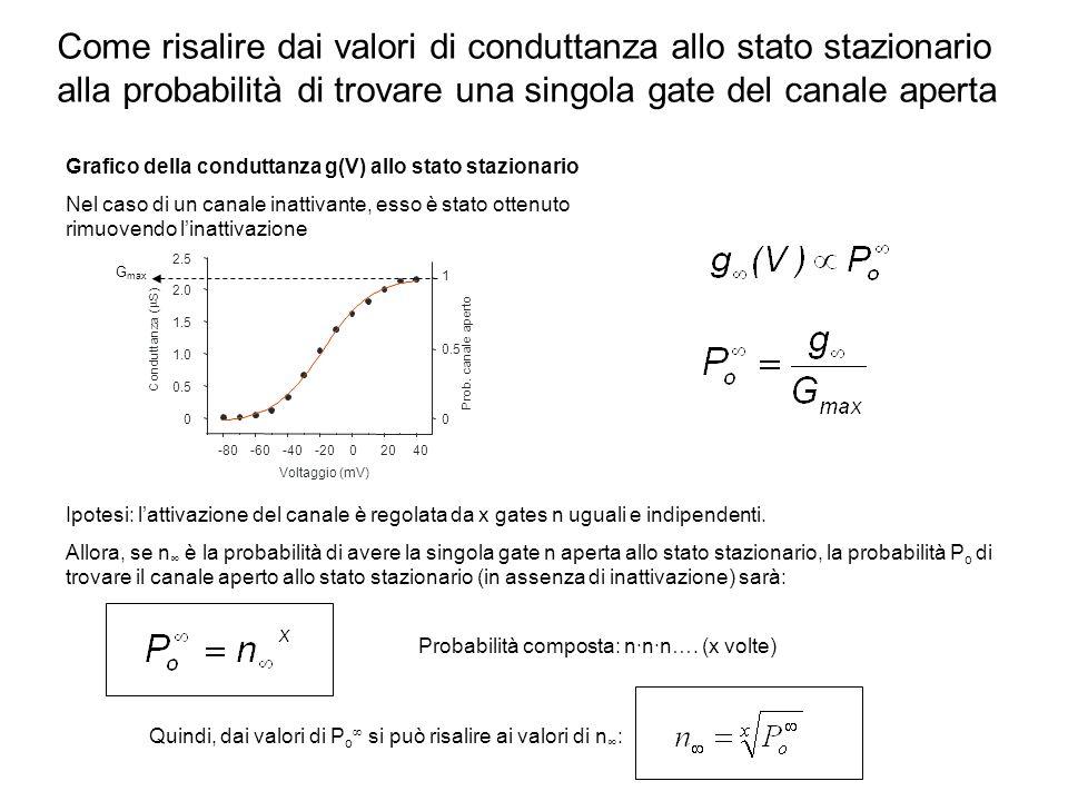 Come risalire dai valori di conduttanza allo stato stazionario alla probabilità di trovare una singola gate del canale aperta Grafico della conduttanz