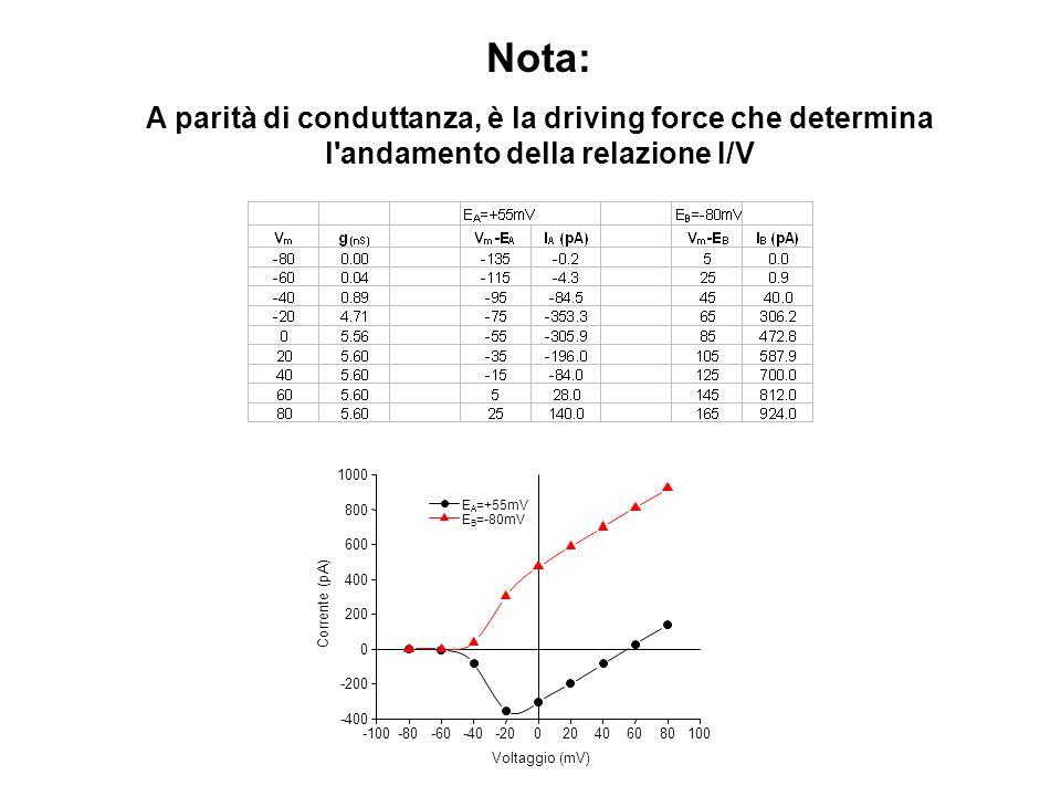 Nota: A parità di conduttanza, è la driving force che determina l'andamento della relazione I/V -100-80-60-40-20020406080100 -400 -200 0 200 400 600 8