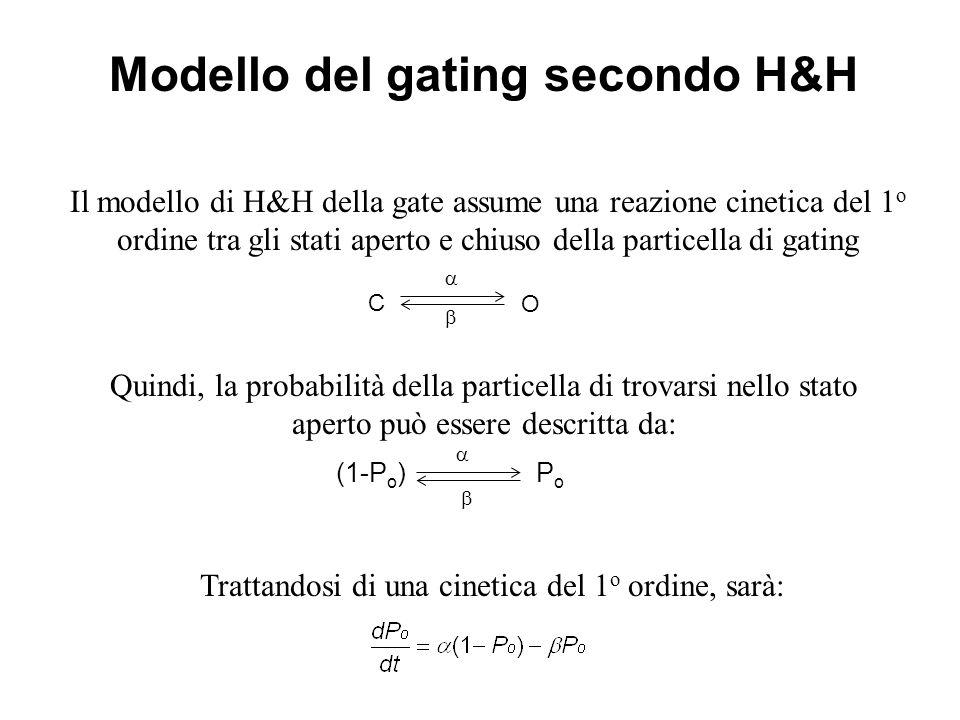 Il modello di H&H della gate assume una reazione cinetica del 1 o ordine tra gli stati aperto e chiuso della particella di gating C O Quindi, la proba