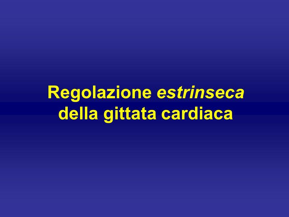 Regolazione estrinseca della gittata cardiaca