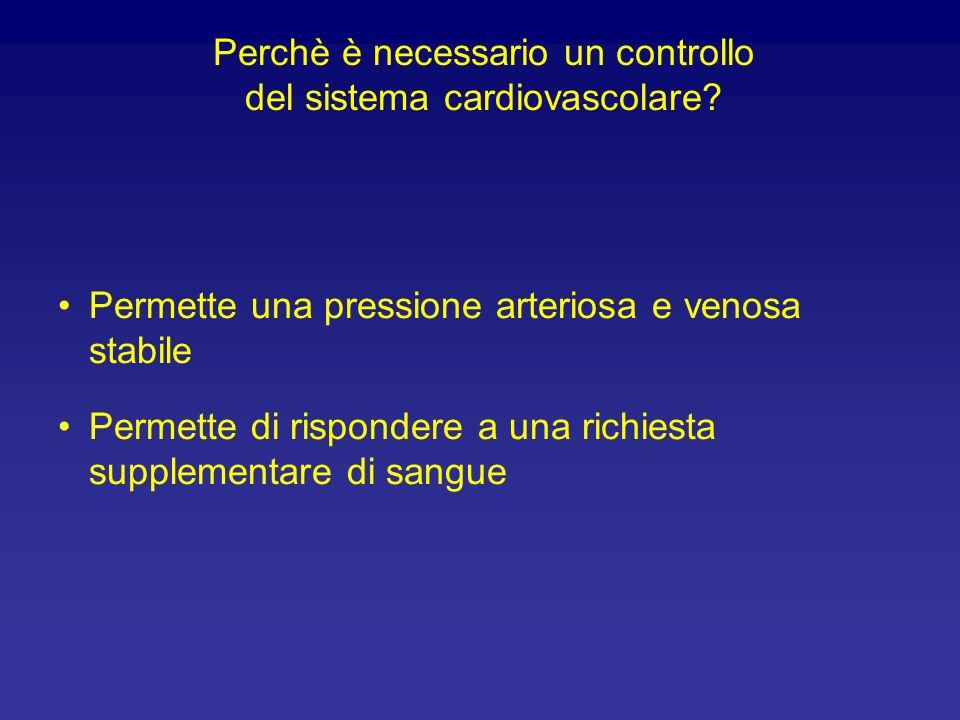 Relazione tra frequenza di scarica e pressione arteriosa 0 100 200 300 050100150 Pressione seno carotideo (mmHg) Frequenza di scarica (s -1 ) Dai barocettori origina una continua scarica di impulsi nervosi afferenti.
